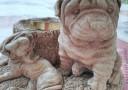 bulldog hdr